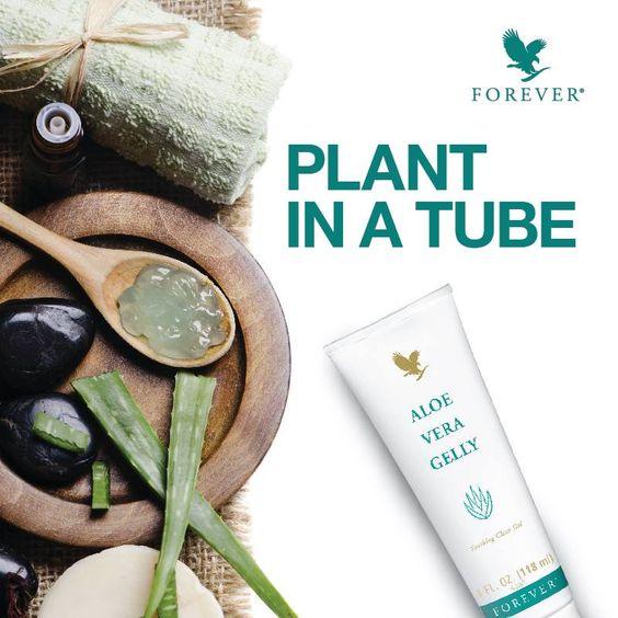 Aloe Vera Gelly o plantă intr-un tub