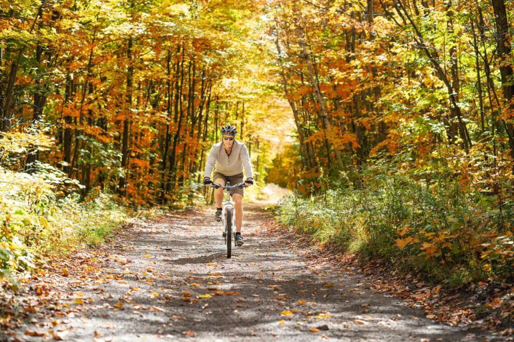 biciclist prin padure